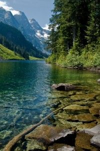 Nature iPhone Wallpapers 3