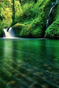 Nature iPhone Wallpapers 4